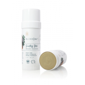 Scentless Stick Solid Natural Deodorant