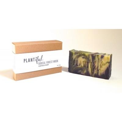 Castille Soap - Boreal Forest Musk